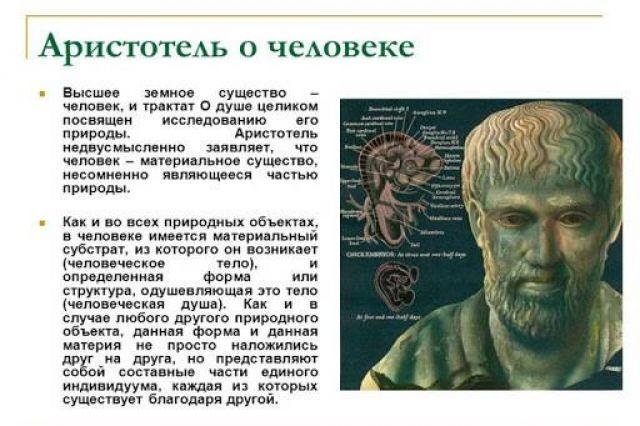 Аристотель о человеке