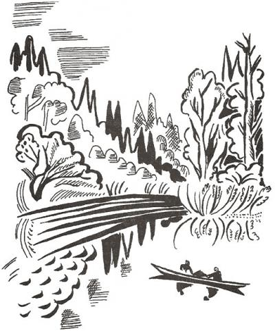 Рисунок Ю. Коваля